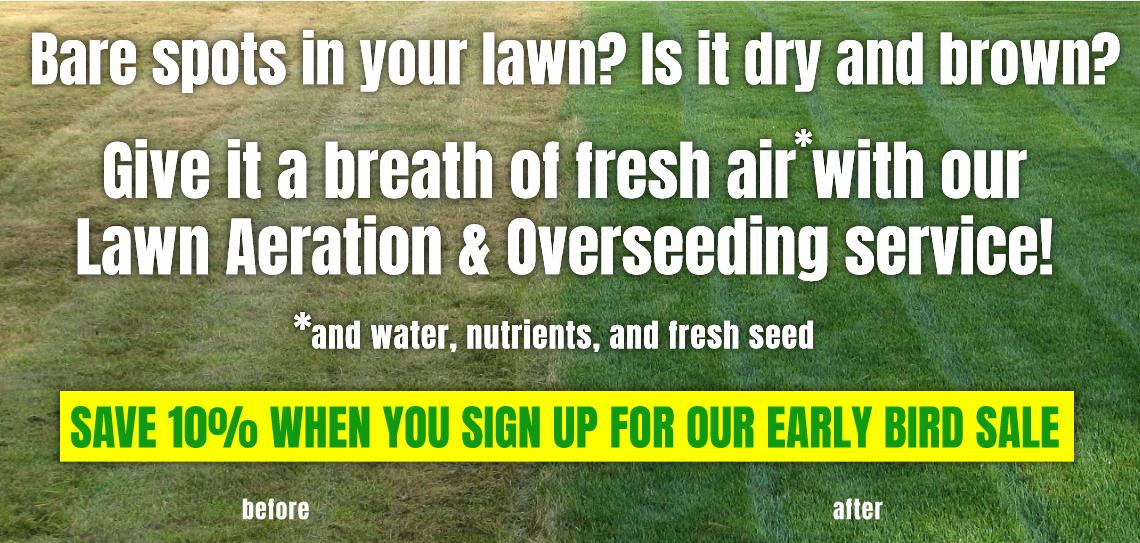 lawn aeration and overseeding baltimore county